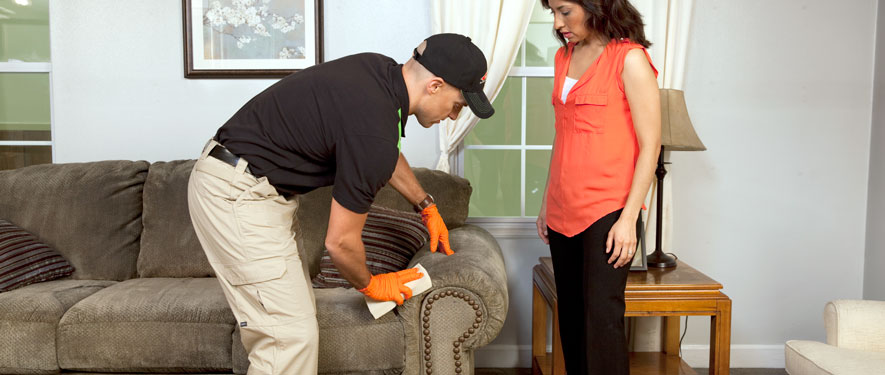 Palmdale, CA carpet upholstery cleaning